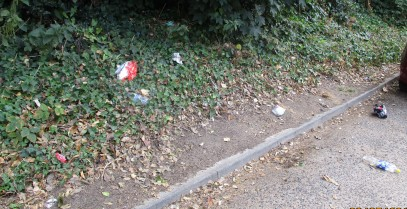 litter in area